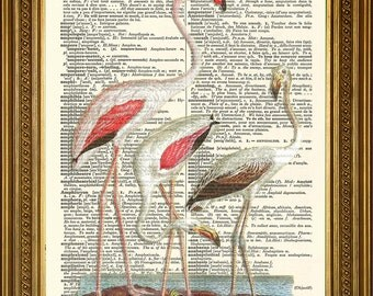 "PINK FLAMINGO BIRDS Print: Original Antique Dictionary Art Wall Decor (8 x 10"")"