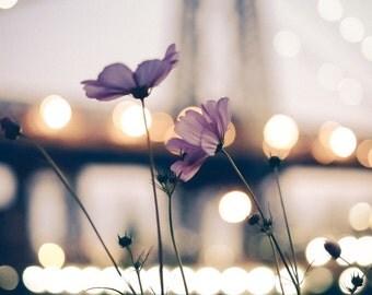 New York Photography - purple flower, Williamsburg Bridge, retro photo, vintage flower, dreamy purple, night lights New York - 8x10 photo
