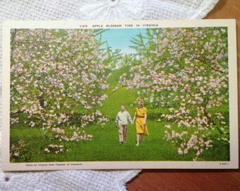 Vintage Postcard, Retro Woman and Child, Apple Blossoms, Virginia - 1940s Linen Paper Ephemera