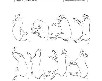 The 'Pound' Dog Sleep Study Art Print. Illustrations of a dog's sleeping postions