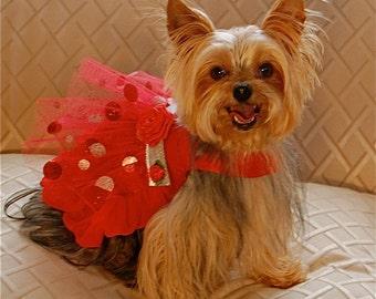 Crimson Princess Red Dog Party Dress