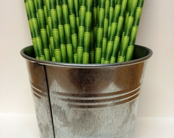 25 Green Bamboo Paper Straws - Perfect for Parties, Weddings, Events, Baby Showers, Birthdays, Bar Mitzvah, Bat Mitzvah, Pool Party, Luau