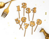 Amber Bamboo Birthday Number Cupcake Toppers - Set of 12
