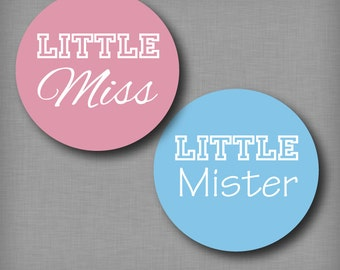 Gender Reveal Ideas Party Stickers Little Miss and Little Mister Pink and Blue Voting Labels