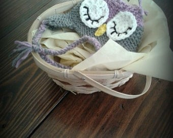 Newborn Owl Hat, Purple Gray Owl Hat, Crochet Sleepy Owl Hat, Owl Baby Shower, Gift for Baby Girl, Gifts for Babies, Owl Costume, Baby Gifts