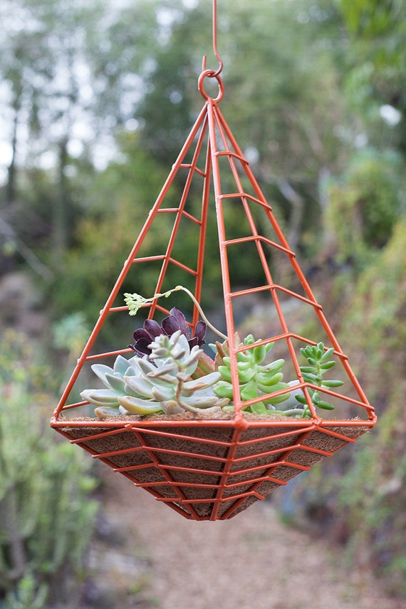 Hedge: small hanging planter in sunset orange