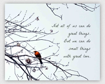 Inspirational Quote photograph print, typography, robin