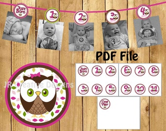 Look Whoo's 1 Owl Girl theme 0 months to 12 months photo banner picture holder - 1 year banner (DIY Printable File PDF)