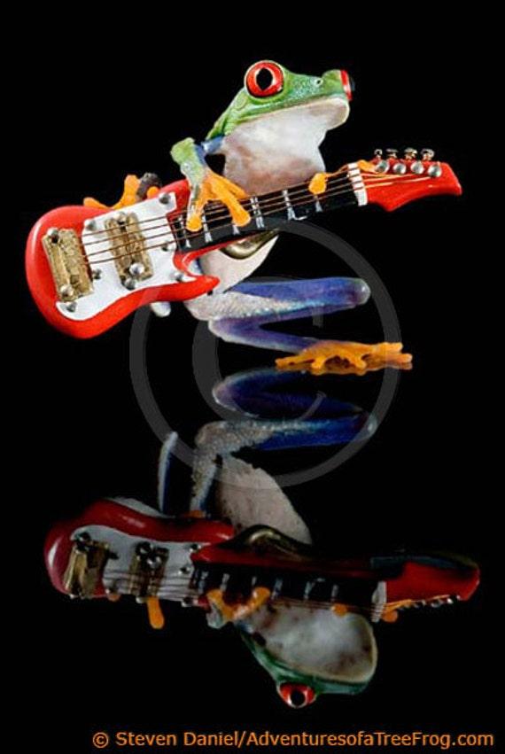 Electric Guitar, Frog - Fender Guitar Art - Real Frog