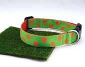 """Orange Polka Dots With Lime Green Spring Summer Dog Collar, 1"""" Wide"""