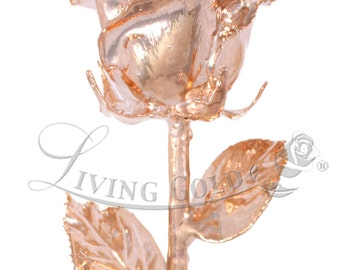 "NEW! Real Rose Dipped in Rose Gold by Living Gold (12"" Open Bud)"
