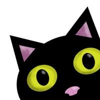 poppyseedcats