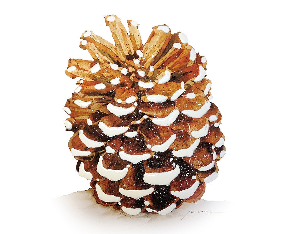 Watercolor painting snow dusted pine cone painting for How to paint pine cones for christmas