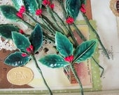 Holly Leaves with Berries / Lacquered / Vintage Millinery / Twelve Stems / Thirty Six Leaves