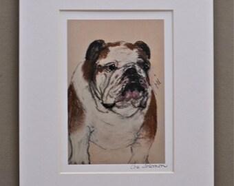 Bulldog Dog Art Print Matted By Cori Solomon