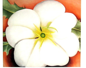 Georgia O'Keeffe - White Flowers on Red Earth -  Fine Art Print - 1985 Vintage Book Page Reproduction - 9 x 12