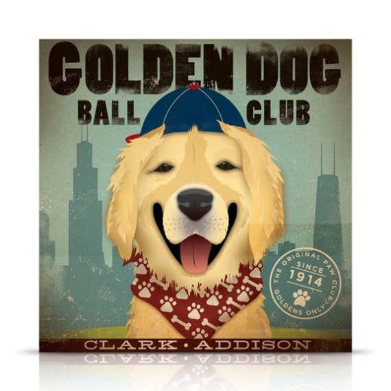 Where Can I Buy A Dog In Chicago Il