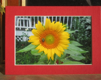 Flowers From My Garden, Sunflower, Home Decor, Wall Hanging