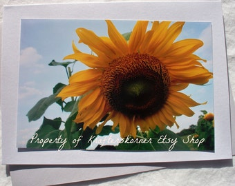 Sunflower Photo Card Envelope Included!