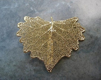Sale - Free US Shipping - Real Leaf Brooch/Pin and Pendant - 24k Gold -Cottonwood