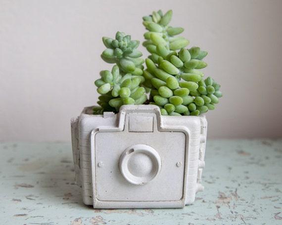 Camera Planter Cement Retro Home Decor Hipster Chic Garden