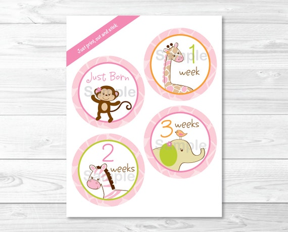 Girl Jungle Animal Monthly Milestone Stickers / Pink Jungle Animal Milestone Stickers / Iron Ons / Printable INSTANT DOWNLOAD