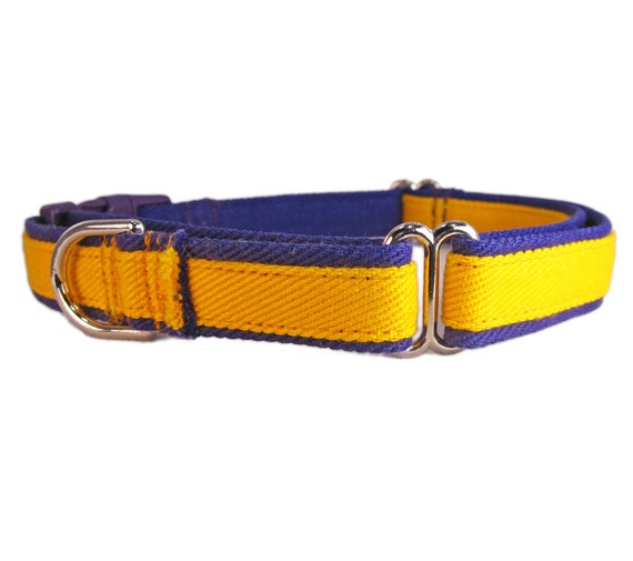 martingale dog collar with buckle gold and purple by