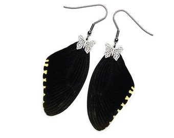 Handmade  Real Butterfly Wing Earrings (Papilio Polytes Forewing  - E218)