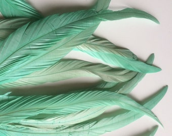 VOGUE COQUE TAIL Feathers , Mint Green  / 156