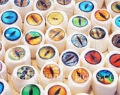 Creature eyes edible art marshmallows by Vintage Confections