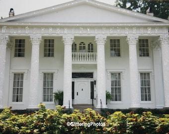 Whitehall, Mansion, Victorian, Louisville, Kentucky, Fine Art, Photography, 8 x 10, Print, Glossy, OOAK