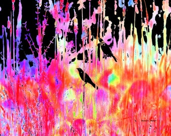 Grackle Bird Art, Abstract Realism, Hot Pink Black Blue, Bold Color, Wildflowers Field Meadow, Wall Hanging, Home Decor, 8 x 10 Giclee Print