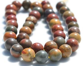 19 Picasso Jasper  Round 10mm Beads  BD734