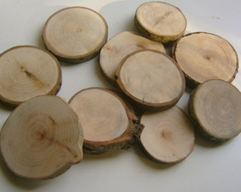10  Tree Branch Slices  2.5 inch