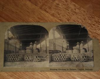 Stereoscope slide - Circa 1920s? - Culebra Railroad - Panama