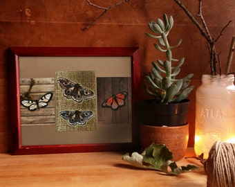 """Wings art print collage / monarch butterfly / emperor moth / boho decor / insects illustration / nature inspired art / """"rustic woodland"""""""