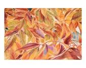 Fall Leaves Pastel Drawing- Original Pastel- Leaf Art- Weeping Crabapple Leaves- 7x10- Red, Orange- Boulder Colorado