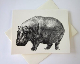 Hippo Hippopotamus Cards Set of 10 in White or Light Ivory with Matching Envelopes