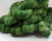 St Brigid - Kelpie DK merino hand dyed yarn - 100g