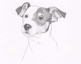 Jack Russell Terrier Note Cards - Gift Set of Eight - Free Shipping US - Original Pencil Art Design - Desert Impressions