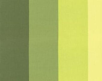 Color Me Happy from V and Co and Moda fabrics, Ombre Stripe Light Green , 1/2 yard total