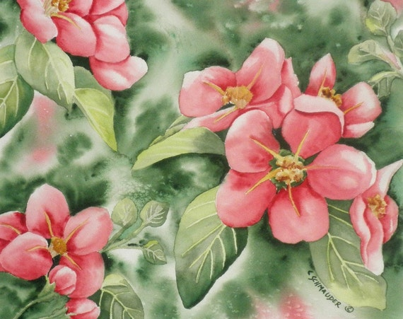 Apple Blossom Time - Blank Note Cards