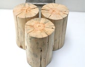 Stump Table Nude Tree Trunk Stool Seat Reclaimed Eco Friendly Sustainable
