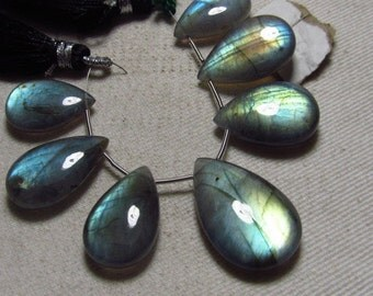 AAA - Amazing Gorgeous  Multy Fire - LABRADORITE - Smooth Polished Pear Briolett Focal Huge size - 12.5x19 - 16x255 mm - 7 pcs