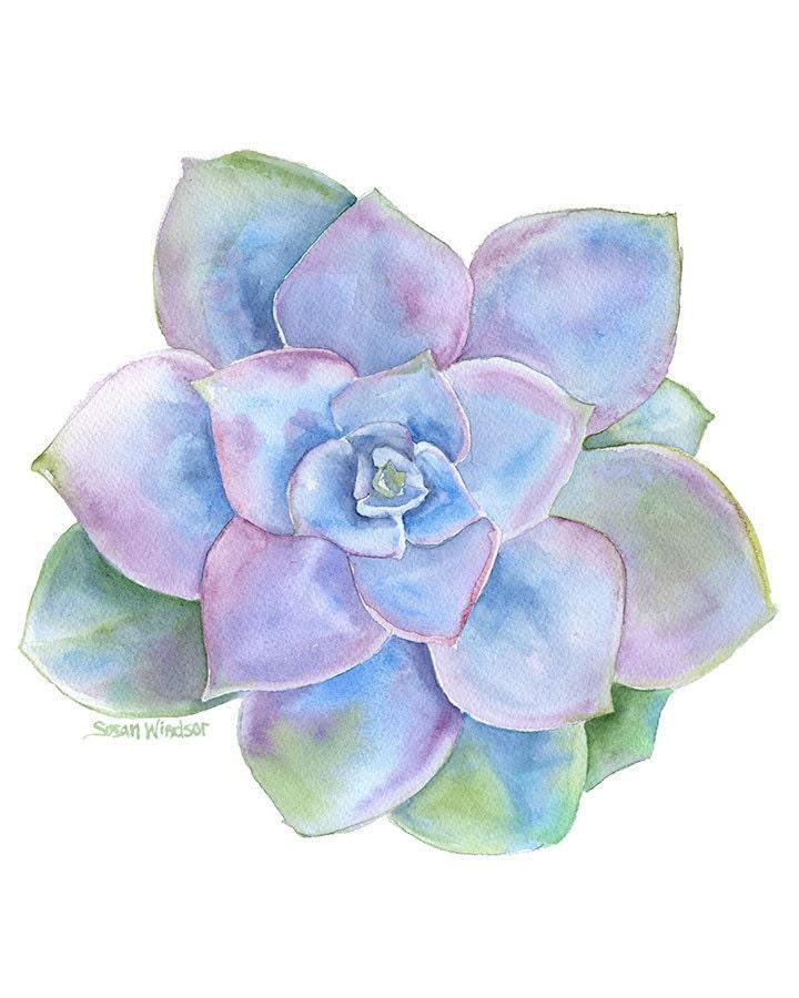 Blue Succulent Watercolor Painting 8 X 10 8 5 X 11