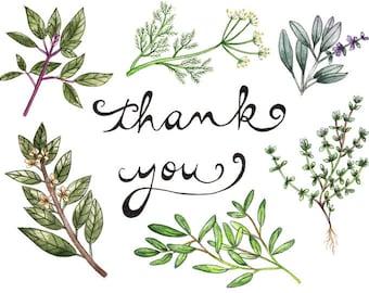 Thank You Card-Herbs