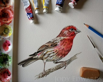 House Finch - Original Watercolor Painting