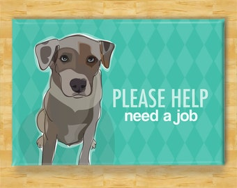 Catahoula Leopard Dog Fridge Magnet - Please Help Need a Job - Funny Dog Refrigerator Magnet