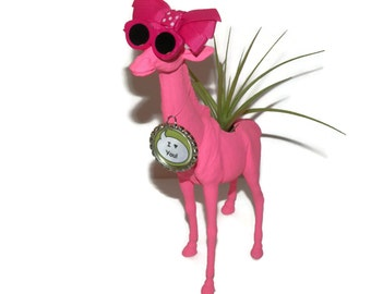 Giraffe planter with air plant and personalized message. Great gift for the lady in your life.