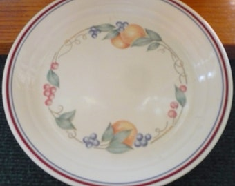 7 -  Corelle - Abundance - Luncheon  Plates - 8.5 Inches - EUC - Price Is For All - Raised Inner Band